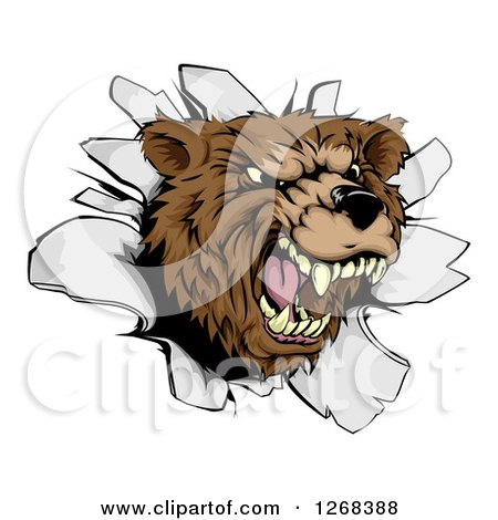 Clipart of a Vicious Aggressive Roaring Bear Mascot Breaking Through a Wall - Royalty Free Vector Illustration by AtStockIllustration