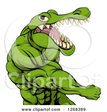 Clipart of a Mad Muscular Crocodile or Alligator Man Punching - Royalty Free Vector Illustration by AtStockIllustration