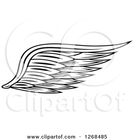 Clipart of a Black and White Feathered Wing 4 - Royalty Free Vector Illustration by Vector Tradition SM