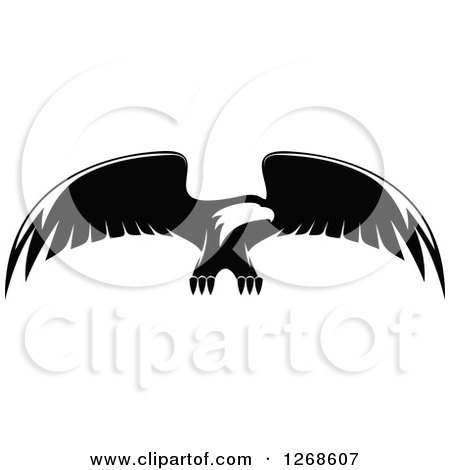 Clipart of a Black and White Bald Eagle in Flight 2 - Royalty Free Vector Illustration by Vector Tradition SM