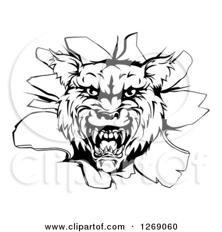 Clipart of a Black and White Wolf Head Breaking Through a Wall - Royalty Free Vector Illustration by AtStockIllustration