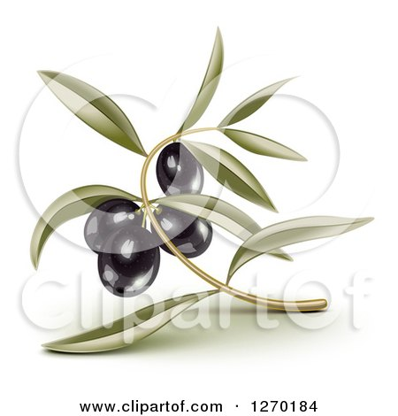 Clipart of 3d Black Olives and Leaves - Royalty Free Vector Illustration by Oligo