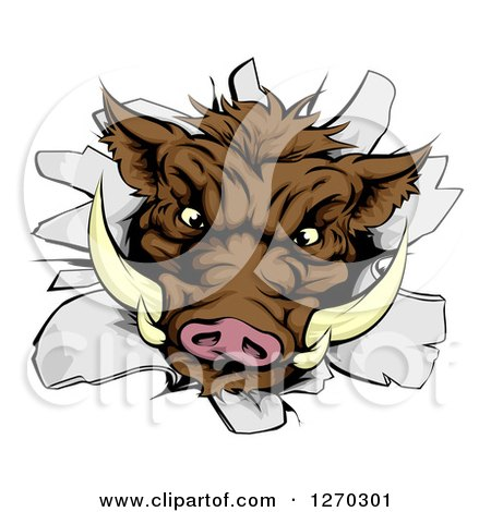 Clipart of a Fierce Brown Boar Head Breaking Through a Wall - Royalty Free Vector Illustration by AtStockIllustration