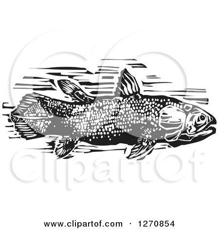 Clipart of a Black and White Woodcut Coelacanth Fish - Royalty Free Vector Illustration by xunantunich