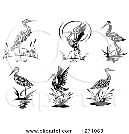 Clipart of Black and White Wading Tribal Cranes - Royalty Free Vector Illustration by Vector Tradition SM
