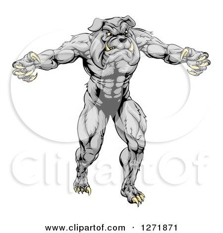 Clipart of a Muscular Gray Bulldog Monster Man Mascot Standing Upright - Royalty Free Vector Illustration by AtStockIllustration