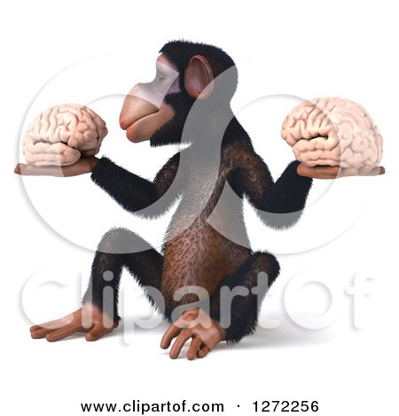 Clipart of a 3d Thinking Chimpanzee Sitting, Facing Left and Holding Two Brains - Royalty Free Illustration by Julos