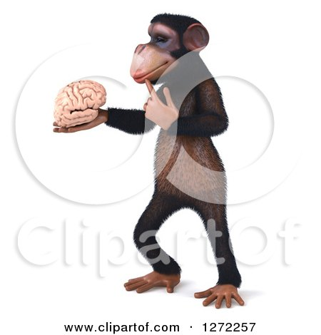 Clipart of a 3d Thinking Chimpanzee Standing, Facing Left and Holding a Brain - Royalty Free Illustration by Julos