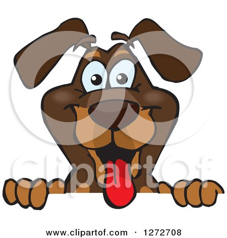 Clipart of a Happy Dachshund Dog Peeking over a Sign - Royalty Free Vector Illustration by Dennis Holmes Designs