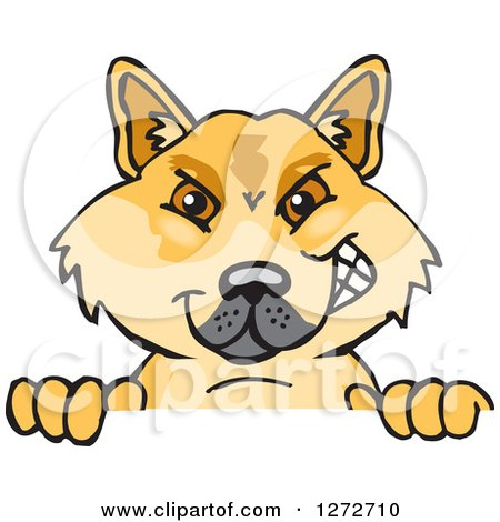 Clipart of a Dingo Peeking over a Sign - Royalty Free Vector Illustration by Dennis Holmes Designs