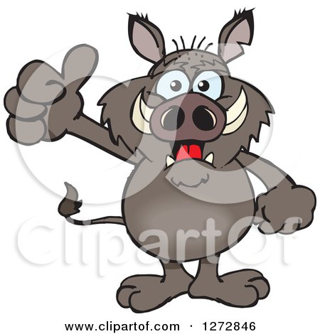 Clipart of a Happy Boar Giving a Thumb up - Royalty Free Vector Illustration by Dennis Holmes Designs