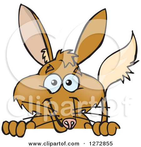 Clipart of a Happy Bilby Peeking over a Sign - Royalty Free Vector Illustration by Dennis Holmes Designs