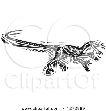 Clipart of a Black and White Woodcut Velociraptor Skeleton - Royalty Free Vector Illustration by xunantunich