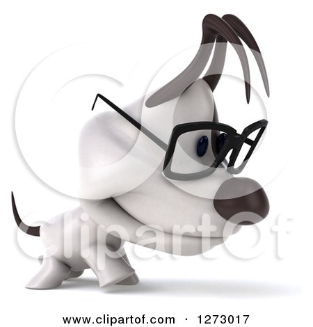 Clipart of a 3d Bespectacled Jack Russell Terrier Dog Walking to the Right - Royalty Free Illustration by Julos
