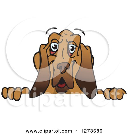 Clipart of a Happy Blood Hound Dog Peeking over a Sign - Royalty Free Vector Illustration by Dennis Holmes Designs