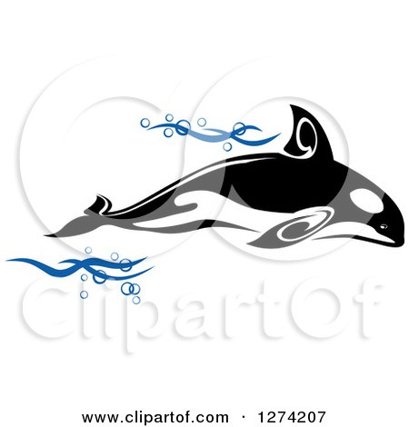 Clipart of a Black and White Killer Whale Orca with Blue Waves - Royalty Free Vector Illustration by Vector Tradition SM