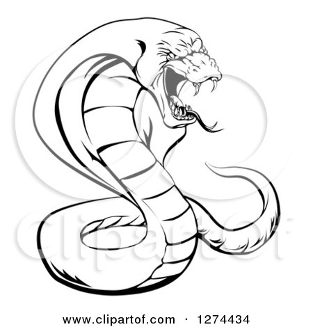 Clipart Of A Black And White Aggressive Cobra Snake Ready To Strike