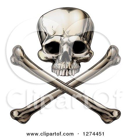 Engraved Human Skull over Crossed Bones Posters, Art Prints