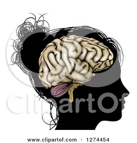 Clipart of a Silhouetted Woman's or Girl's Head with a Visible Brain - Royalty Free Vector Illustration by AtStockIllustration