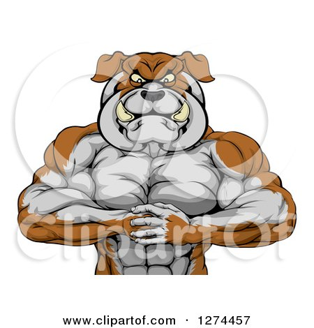 Clipart of a Tough Muscular Bulldog Man Punching One Fist into a Palm - Royalty Free Vector Illustration by AtStockIllustration