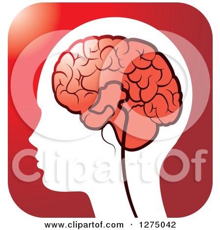 Clipart of a Silhouetted Human Head and Red Brain Icon 2 - Royalty Free Vector Illustration by Lal Perera