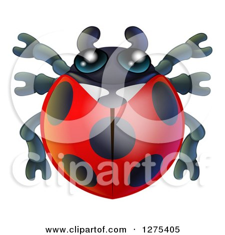 Clipart of a Cute Ladybug - Royalty Free Vector Illustration by AtStockIllustration
