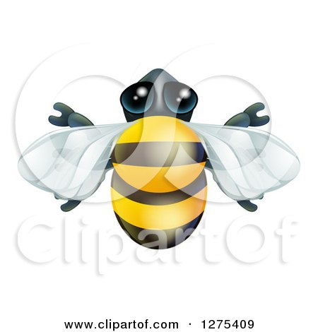 Clipart of a Cute Bee from Above - Royalty Free Vector Illustration by AtStockIllustration