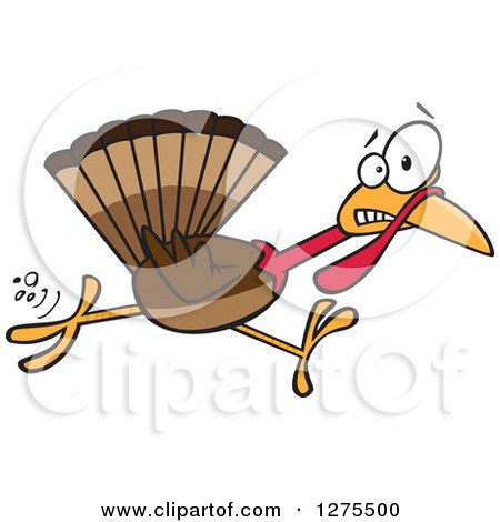 Cartoon Clipart of a Scared Thanksgiving Turkey Bird Running - Royalty Free Vector Illustration by toonaday