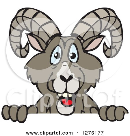 Clipart of a Happy Bighorn Sheep Peeking over a Sign - Royalty Free Vector Illustration by Dennis Holmes Designs