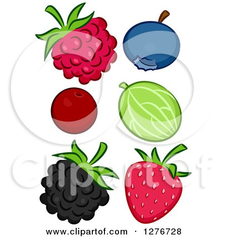 Clipart of a Raspberry, Blueberry, Cranberry, Gooseberry, Blackberry and Strawberry - Royalty Free Vector Illustration by BNP Design Studio
