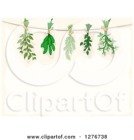 Clipart of a Border of Herbs Being Hung to Dry over Beige Text Space - Royalty Free Vector Illustration by BNP Design Studio