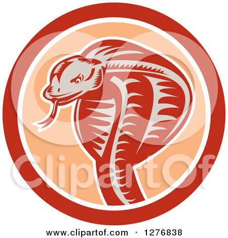 Clipart of a Retro Woodcut Cobra Snake in an Orange and White Circle - Royalty Free Vector Illustration by patrimonio