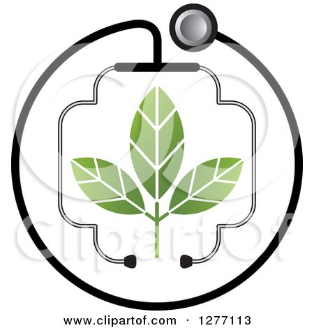 Clipart of a Stethoscope Encircling and Forming a Cross Around a Plant - Royalty Free Vector Illustration by Lal Perera