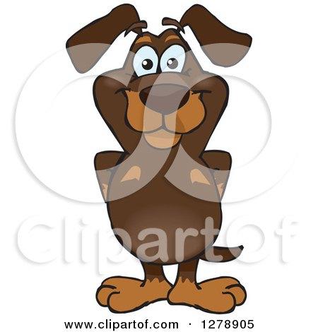 Happy Dachshund Dog Standing Posters, Art Prints