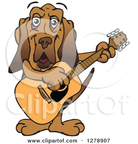 Clipart of a Happy Bloodhound Dog Playing an Acoustic Guitar - Royalty Free Vector Illustration by Dennis Holmes Designs