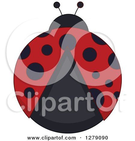 Clipart of an Aerial View of a Ladybug - Royalty Free Vector Illustration by BNP Design Studio