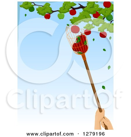 Clipart of a Worker Using a Fruit Picker to Grab Apples from a Tree, with Blue Sky Text Space - Royalty Free Vector Illustration by BNP Design Studio