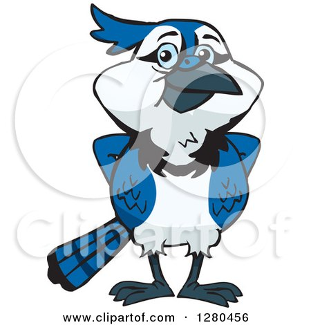 royalty free rf clipart of blue jays illustrations vector rh clipartof com