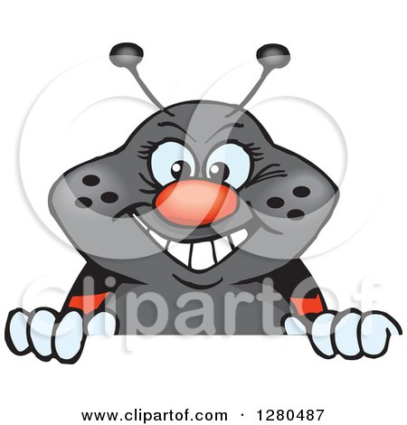 Clipart of a Happy Ladybug Peeking and Smiling over a Sign - Royalty Free Vector Illustration by Dennis Holmes Designs