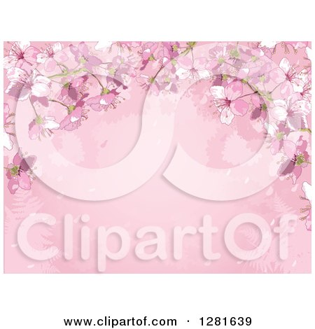 Clipart of a Pink Background of Cherry Blossoms, Silhouetted Ferns and Text Space - Royalty Free Vector Illustration by Pushkin