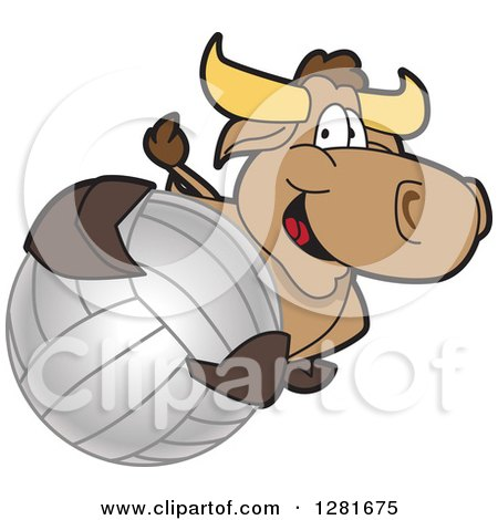 Clipart of a Happy Bull School Mascot Character Holding up or Catching a Volleyball - Royalty Free Vector Illustration by Toons4Biz
