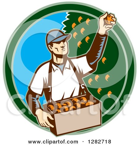 Clipart of a Retro Woodcut Male Fruit Picker Harvesting Oranges in a Green and Blue Circle - Royalty Free Vector Illustration by patrimonio