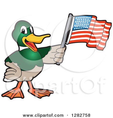 Clipart of a Happy Mallard Duck School Mascot Character Holding an American Flag - Royalty Free Vector Illustration by Toons4Biz