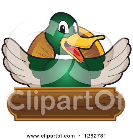 Clipart Of A Happy Mallard Duck School Mascot Character Welcoming Over A Wooden Sign Royalty Free Vector Illustration