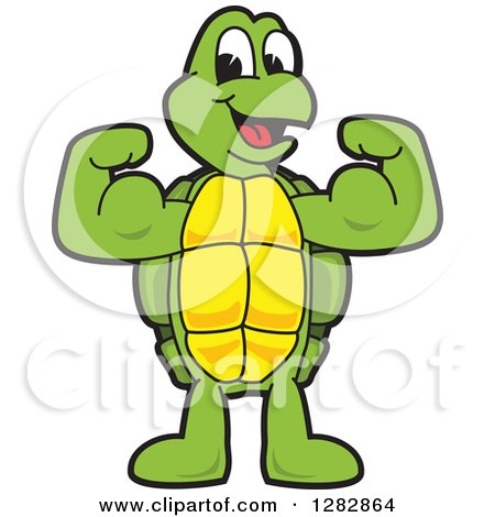 Clipart of a Happy Turtle School Sports Mascot Character Flexing His Muscles - Royalty Free Vector Illustration by Toons4Biz