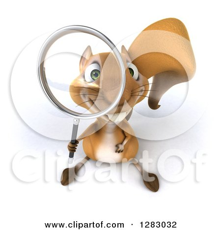 Clipart of a 3d Squirrel Character Looking up Through a Magnifying Glass - Royalty Free Illustration by Julos