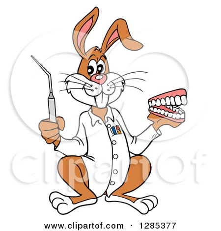 Clipart of a Cartoon Dentist Rabbit Holding a Pick and Set of Teeth - Royalty Free Vector Illustration by LaffToon