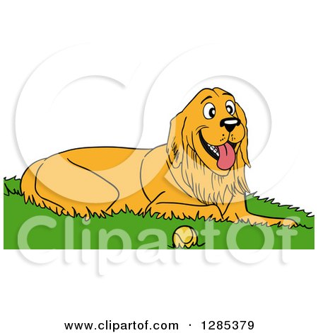 Clipart of a Happy Golden Retriever Dog Resting in Grass by a Tennis Ball - Royalty Free Vector Illustration by LaffToon