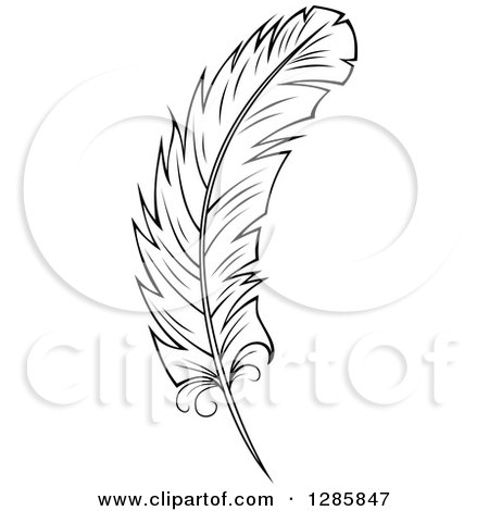 Clipart of a Black and White Feather 8 - Royalty Free Vector Illustration by Vector Tradition SM