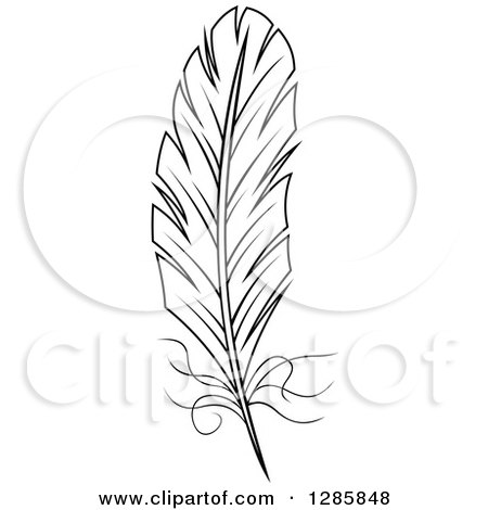 Clipart of a Black and White Feather 9 - Royalty Free Vector Illustration by Vector Tradition SM